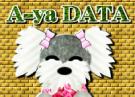 A-yaDATA